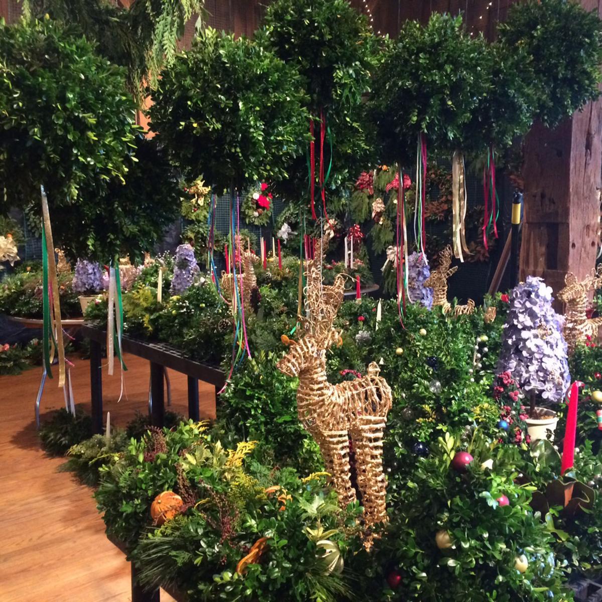 ho-gardening14