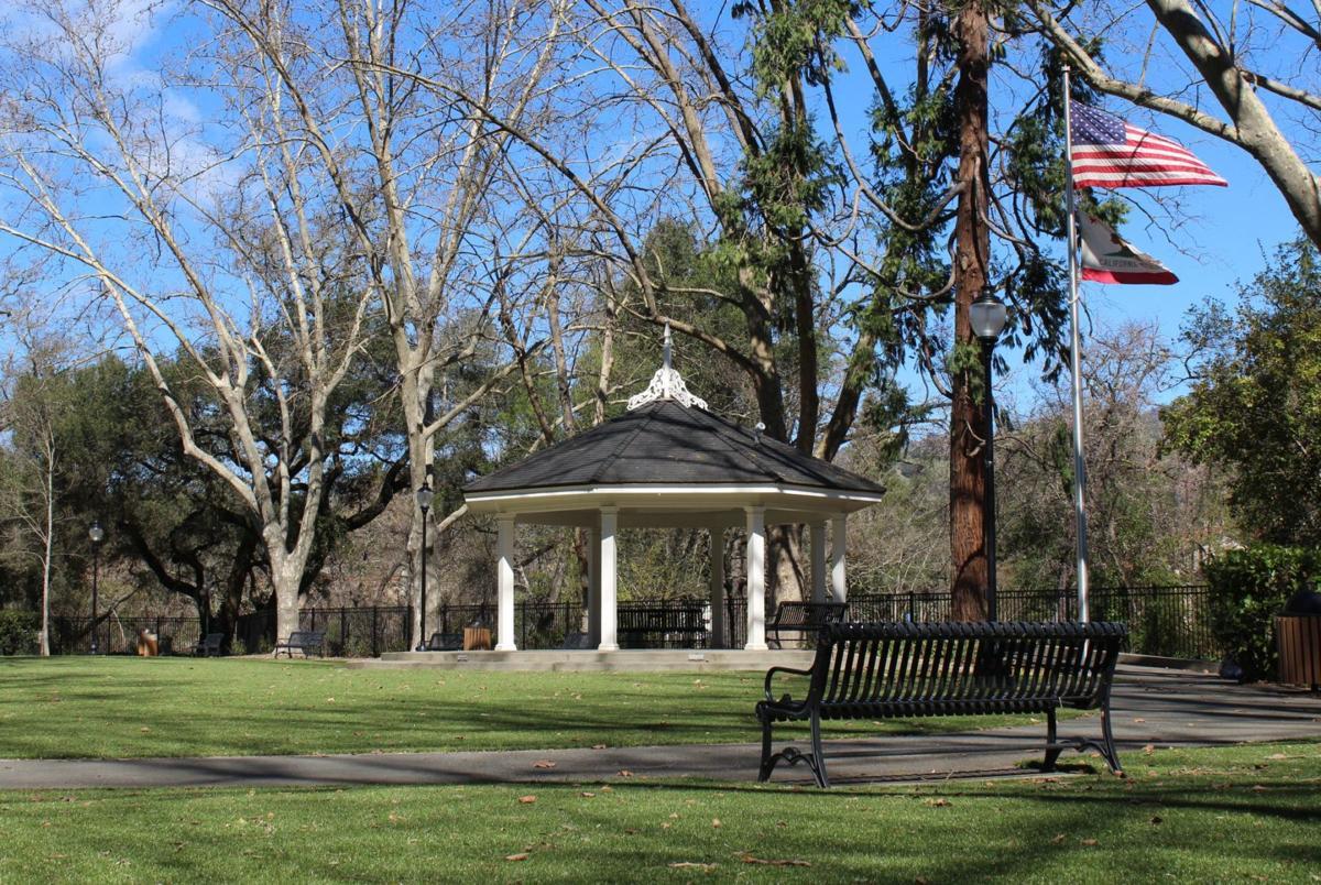 Friends of Pioneer Park