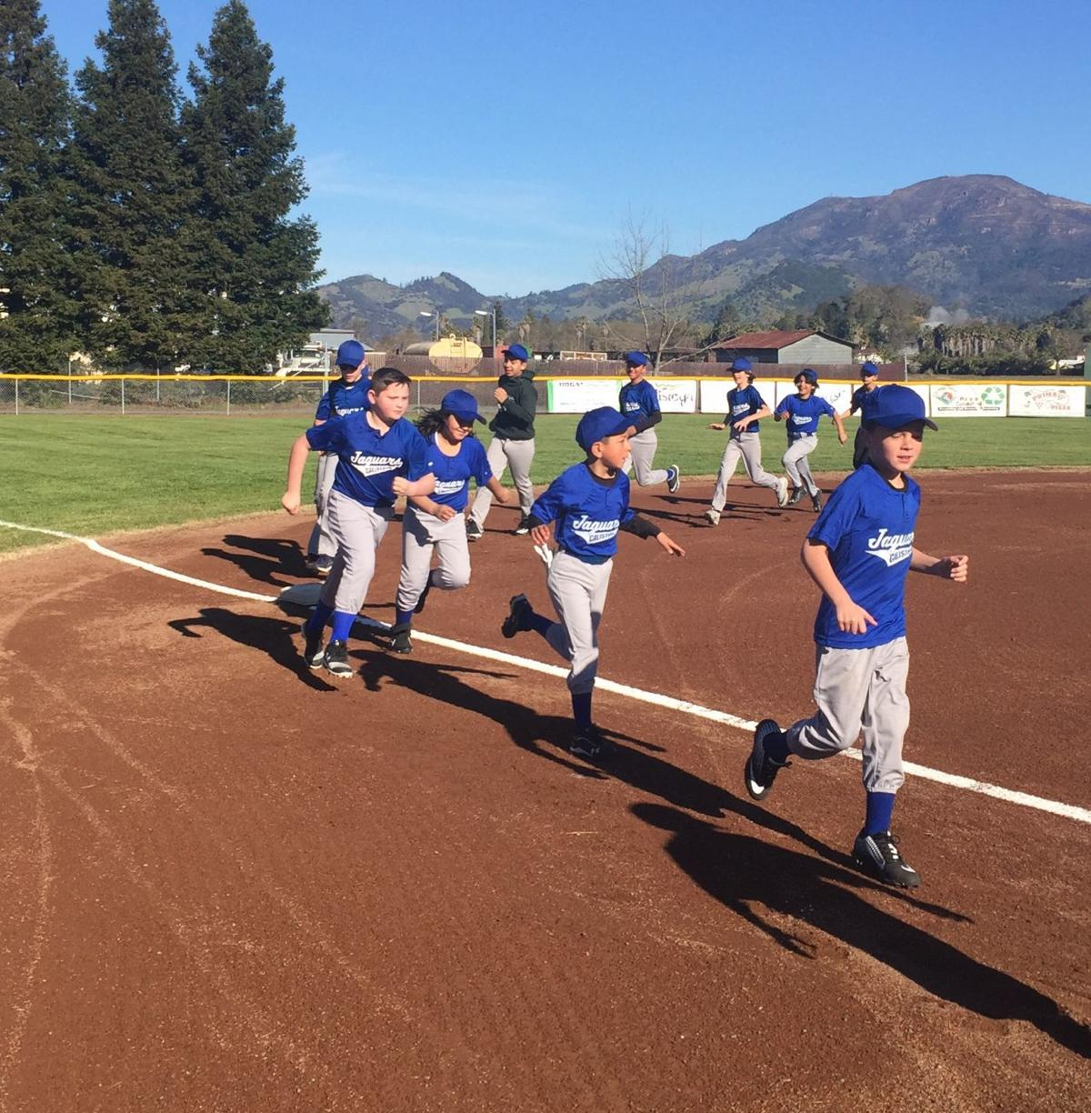Calistoga Little League