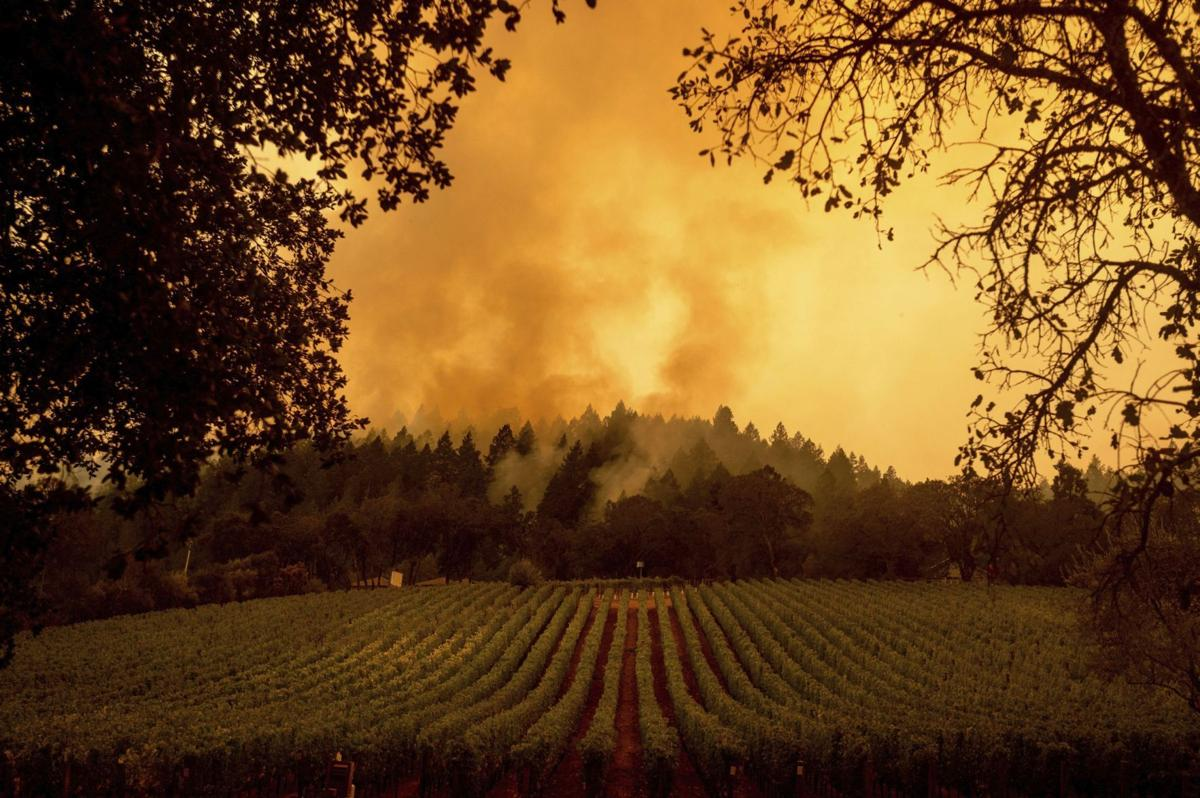 Napa Valley wildfires in 2020
