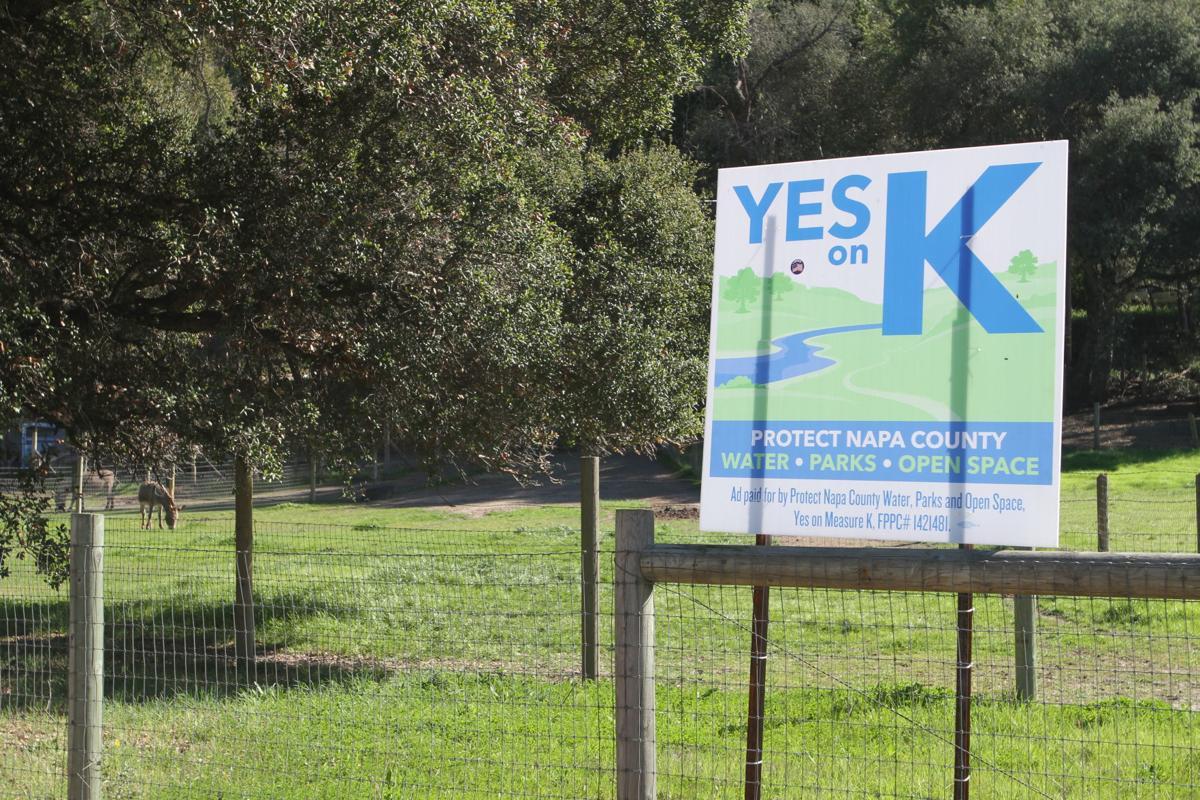 Yes on K sign.JPG