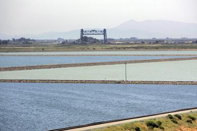 Napa Sanitation District Ponds