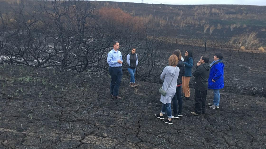 American Canyon awaits rebirth of a burned Newell preserve - Napa Valley Register