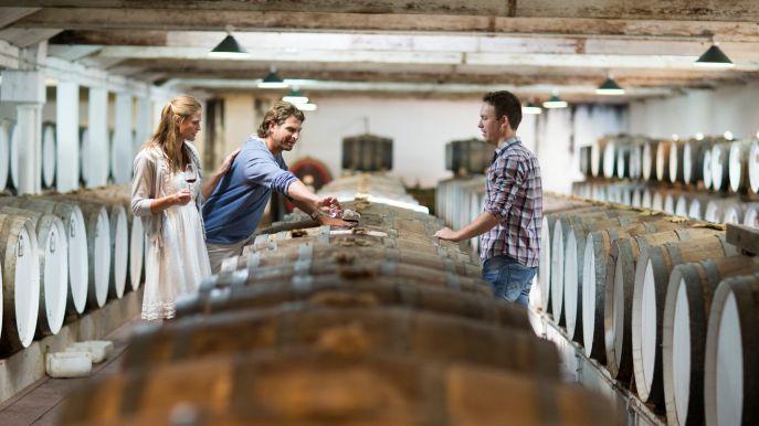 Winery tourists