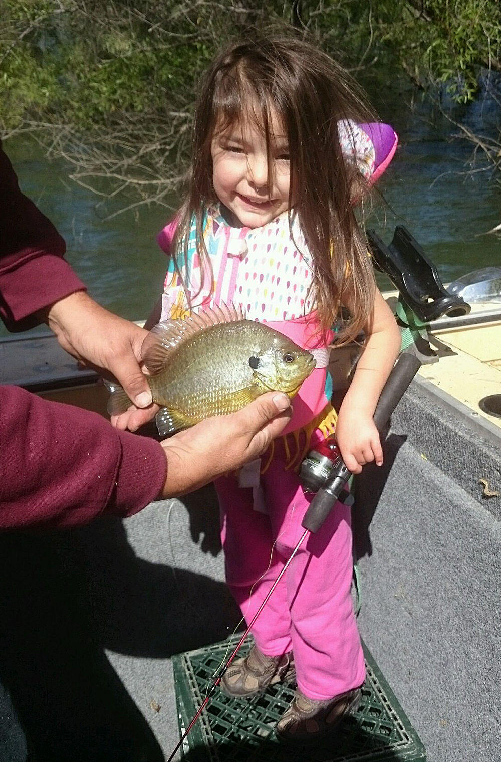Photos napa valley bragging rights local news for Lake hennessey fishing