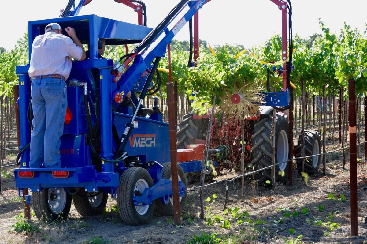 Machines in the vineyards 2