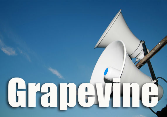 nvr-stockart-grapevine6