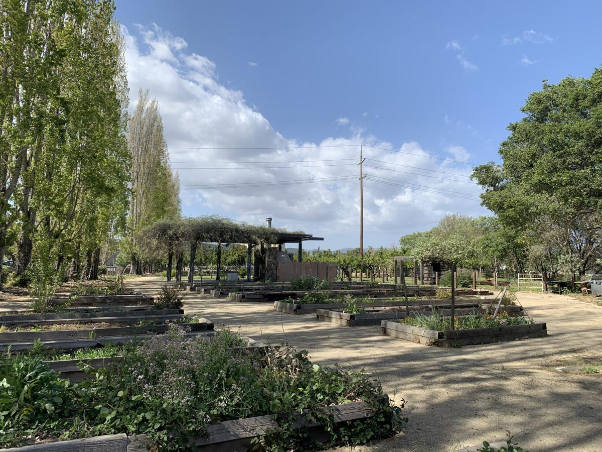 Oxbow Yard