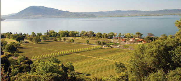 Ceàgo Winery