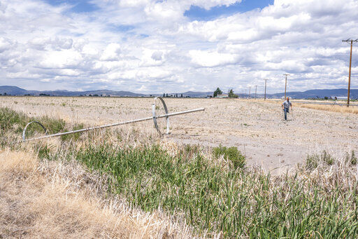'Nobody's winning': Drought upends life in US West basin