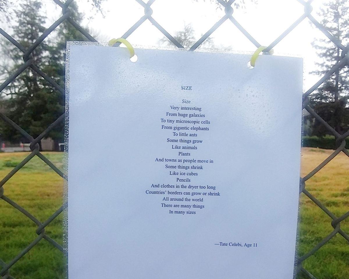 Calistoga Poetry
