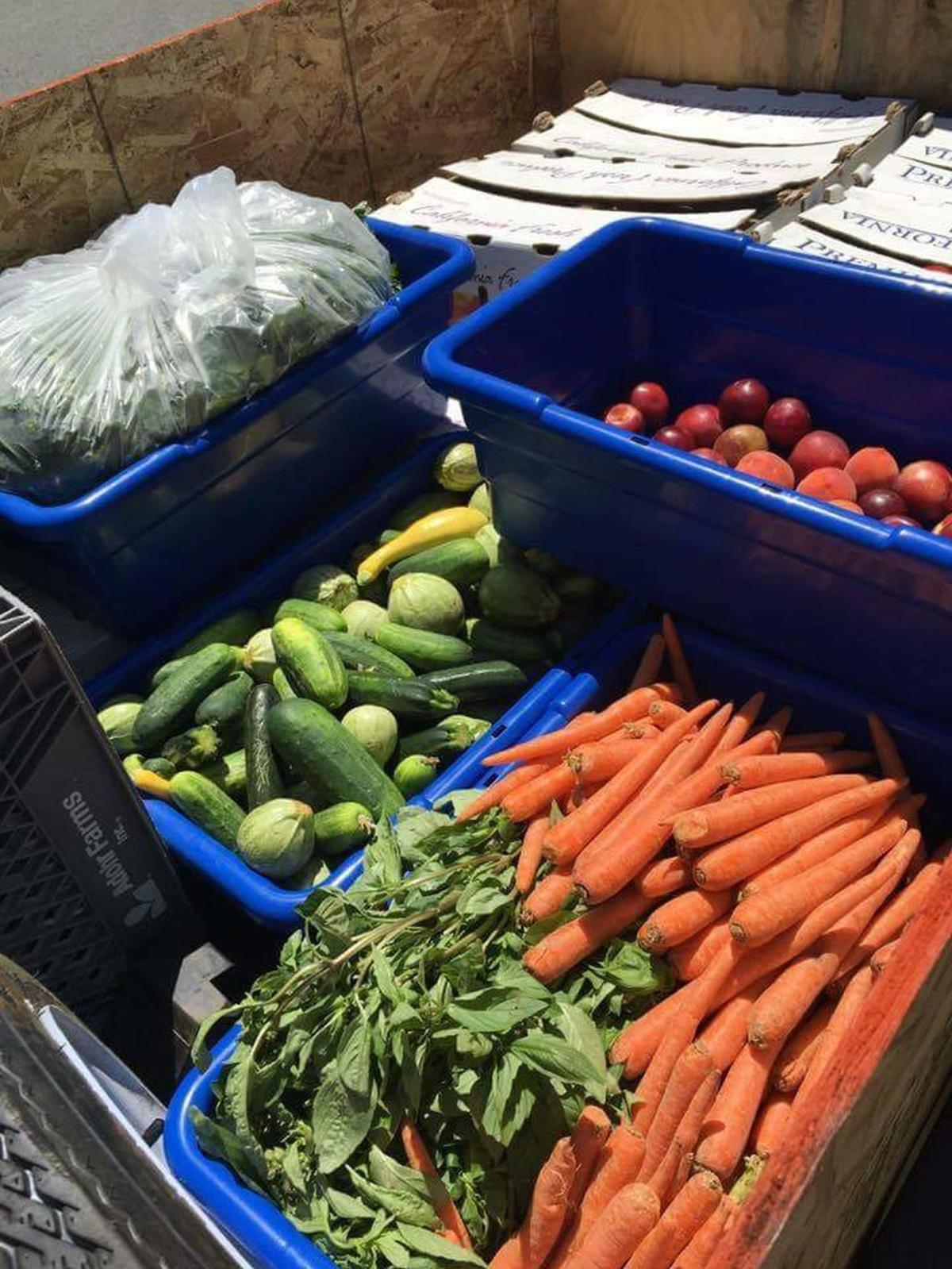 Produce collected by Ken Hawes at Farmers Market