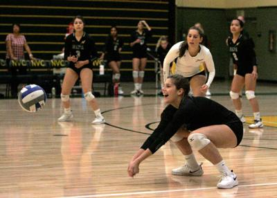 Napa Valley College volleyball