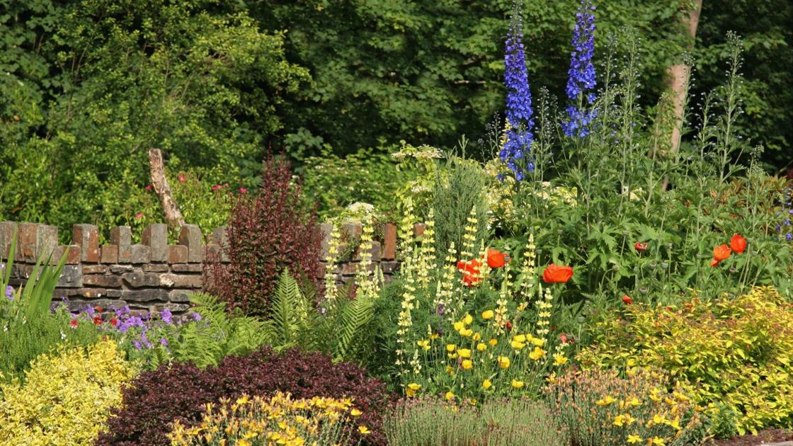 Napa County Master Gardeners: Thoughts about garden design