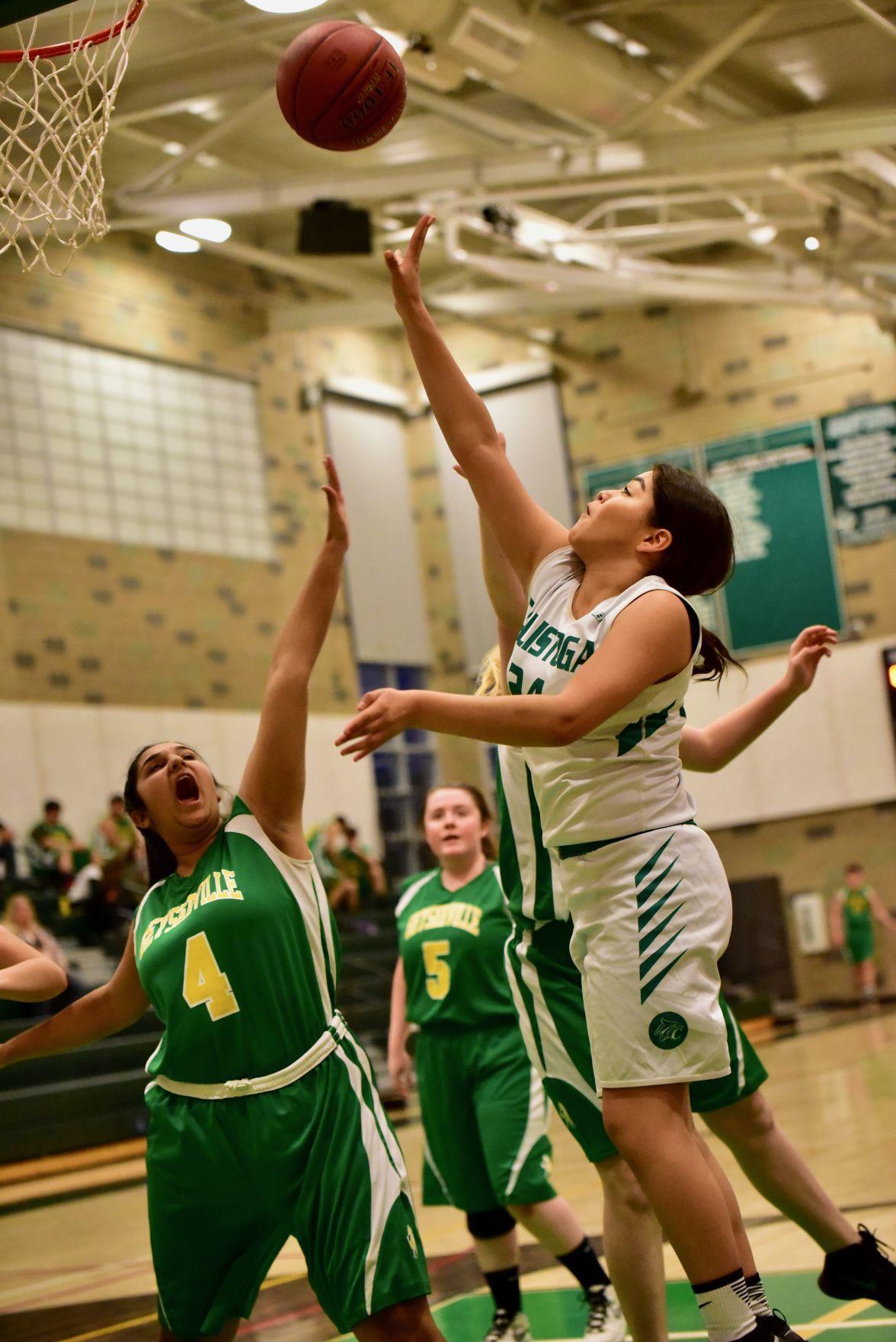 Calistoga High Basketball