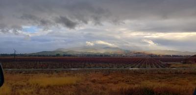 Napa Valley sky shot