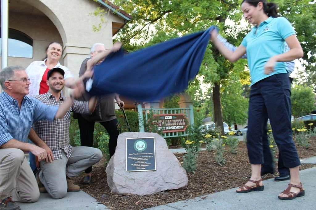 Unveiling the plaque of the Calistoga demonstration garden