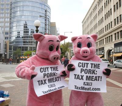 PETA Pigs