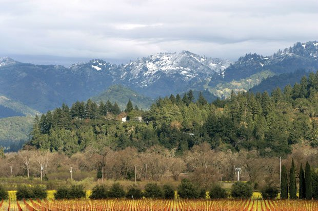 Landtrust report:  A Napa Valley winter snapshot