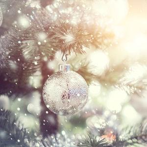 Sterling Vineyards' Christmas Tree Lighting Ceremony