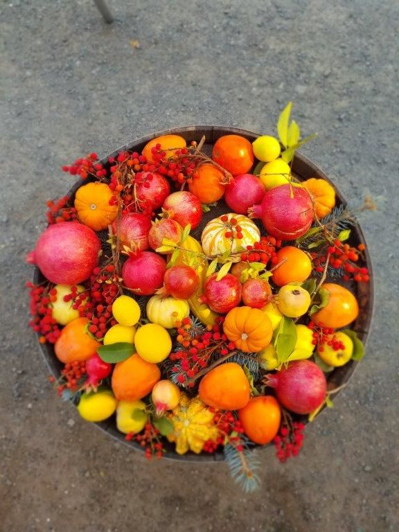 Bountiful Fall Harvest at Tres Sabores