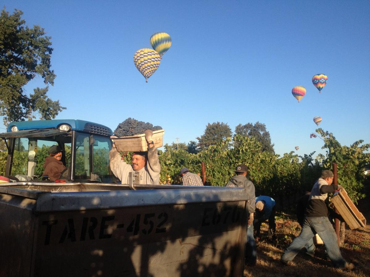 balloons and pickers