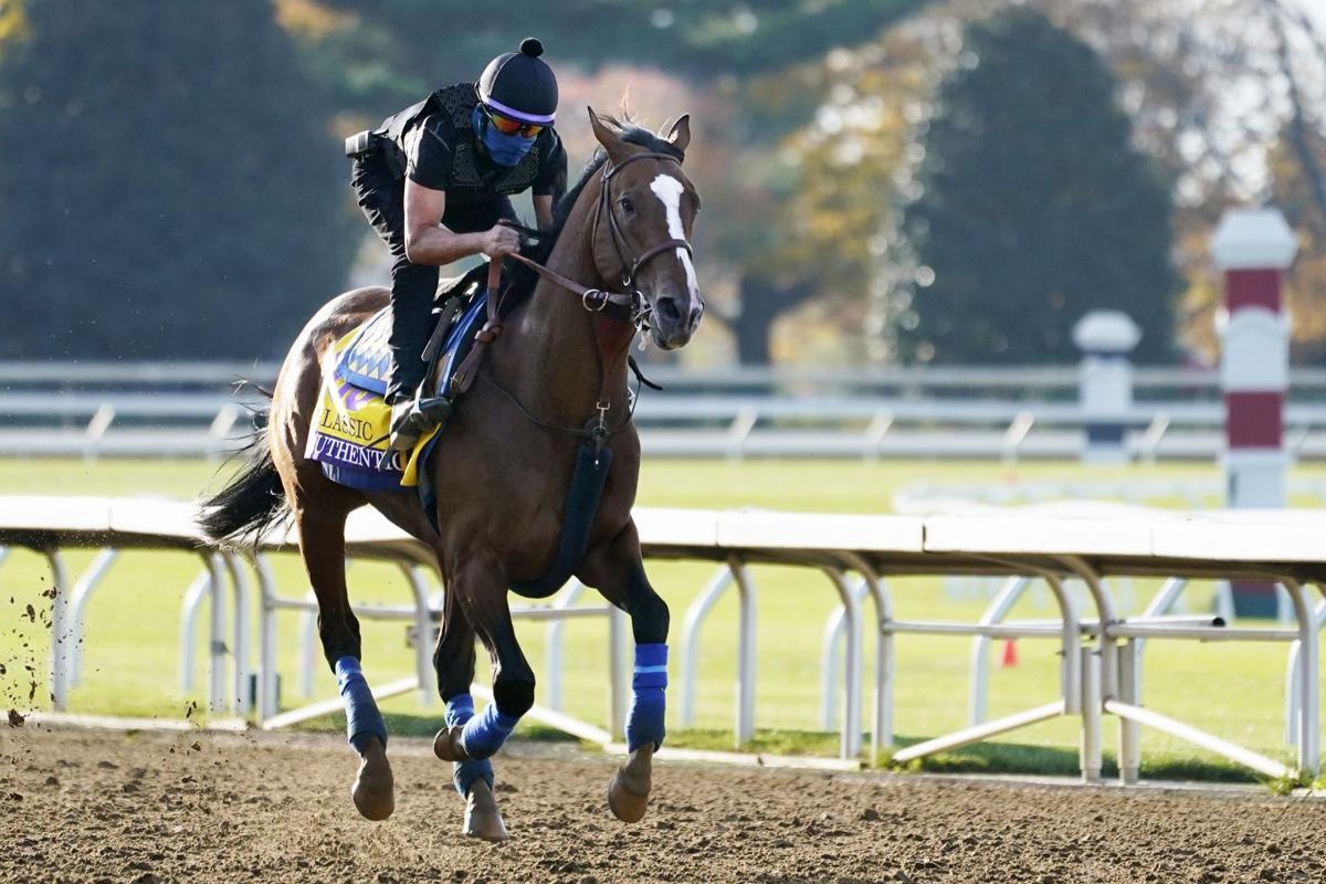 horse betting terms napa