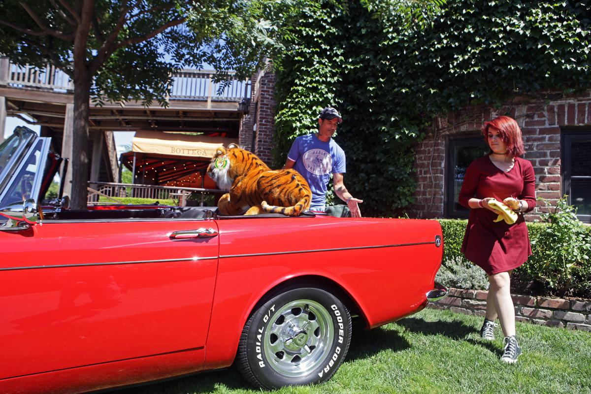 Yountville Father's Day Auto Show 2016