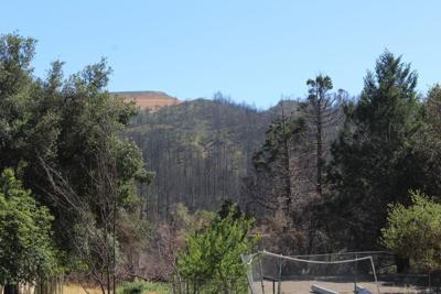 Burn areas viewed from Mountain Home Ranch