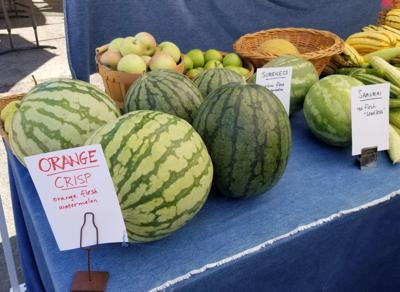 Melons from Long Meadow Ranch