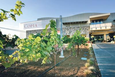 Group of locals enters Copia fray