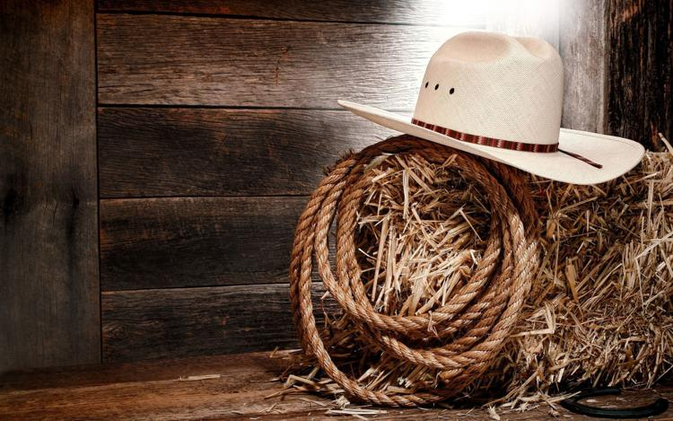 Cowboy Music and Poetry Gathering