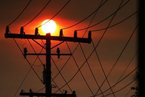PG&E's bankruptcy woes