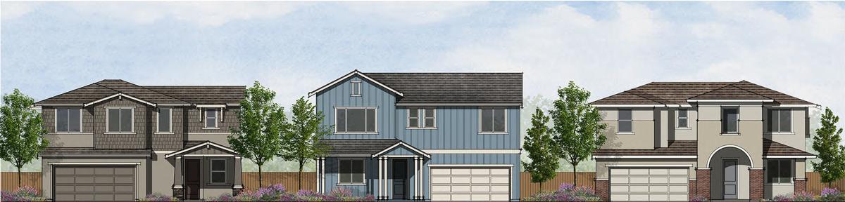 Saratoga Vineyard homes planned in Napa