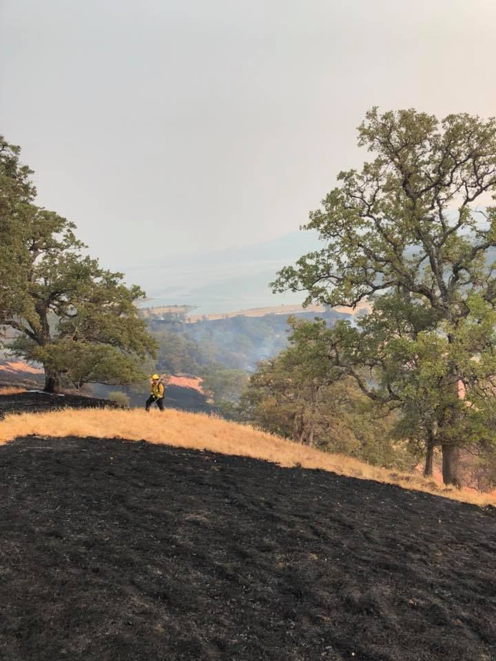 Fire crews work to contain 41 acre fire near Lake Berryessa