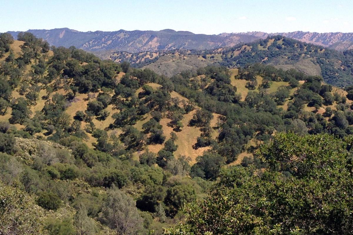 Wragg Ridge