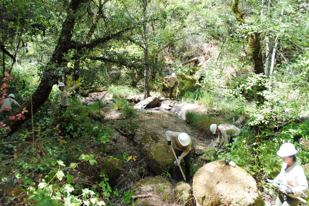 ACE Linda Falls Restoration
