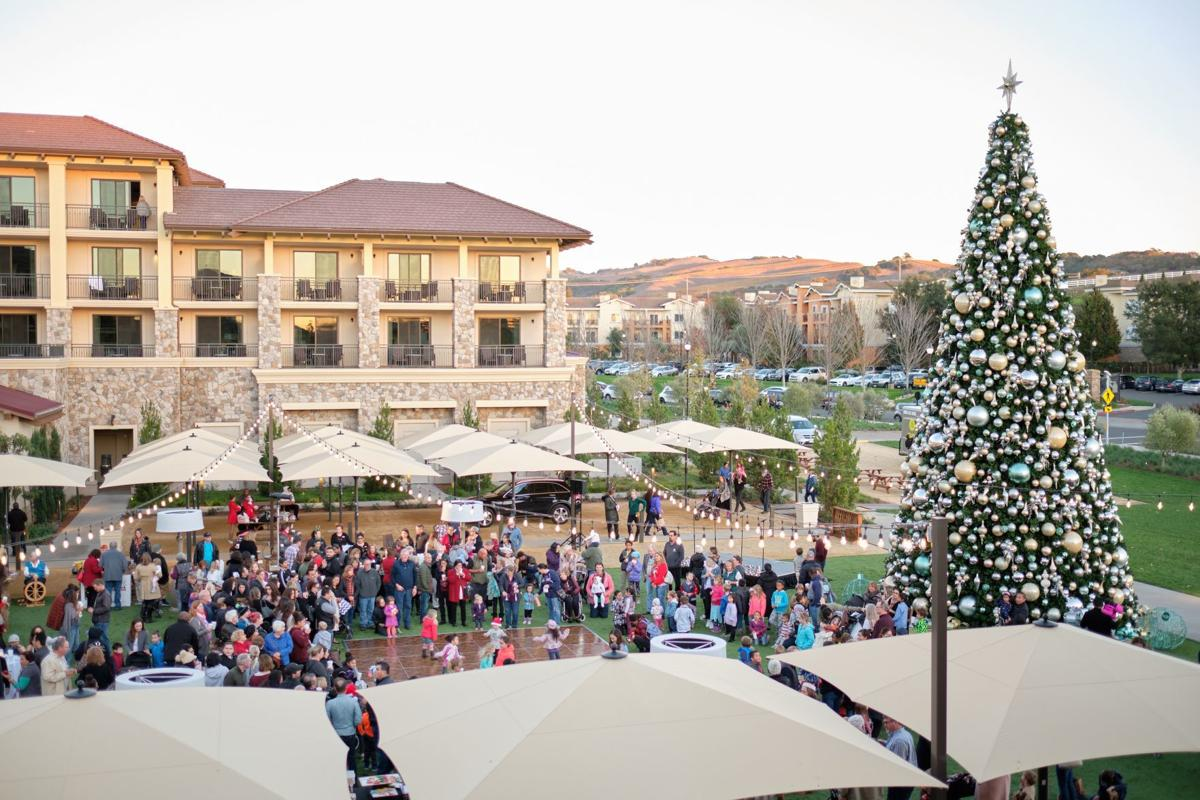 Vista Collina holiday tree by day