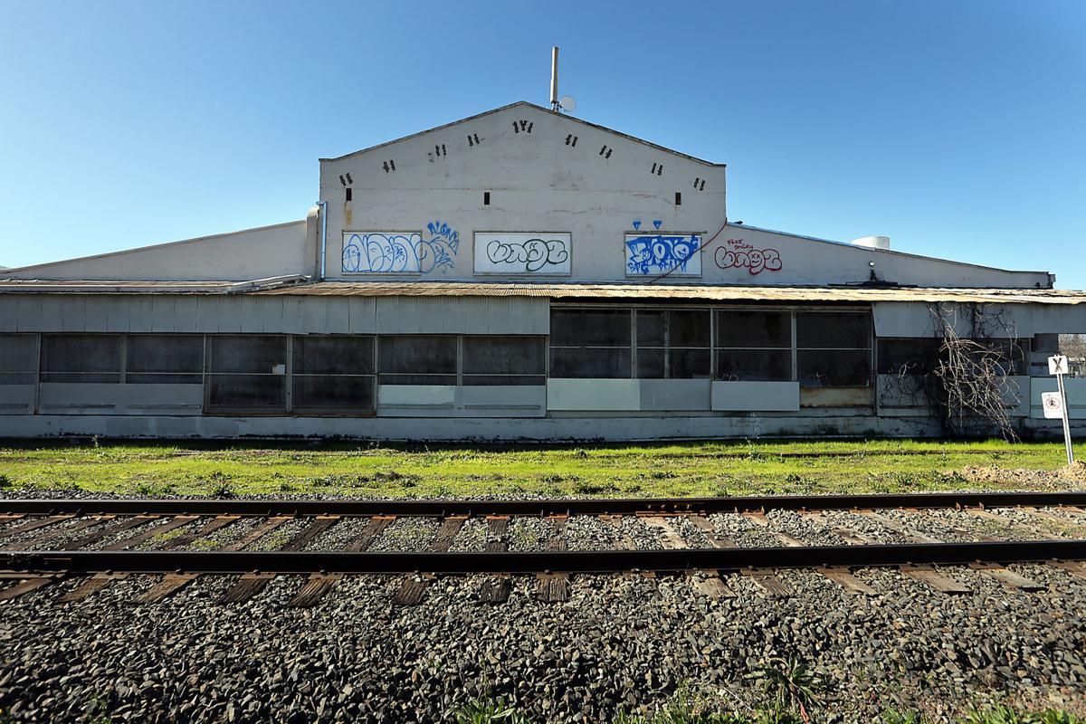 Vine Trail Graffiti