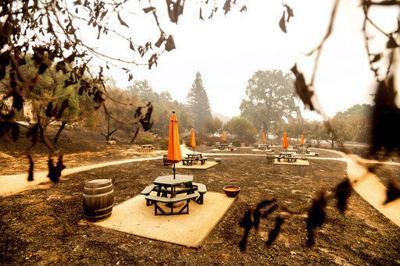 California milestone: 4 million acres burned in wildfires ECONOMY