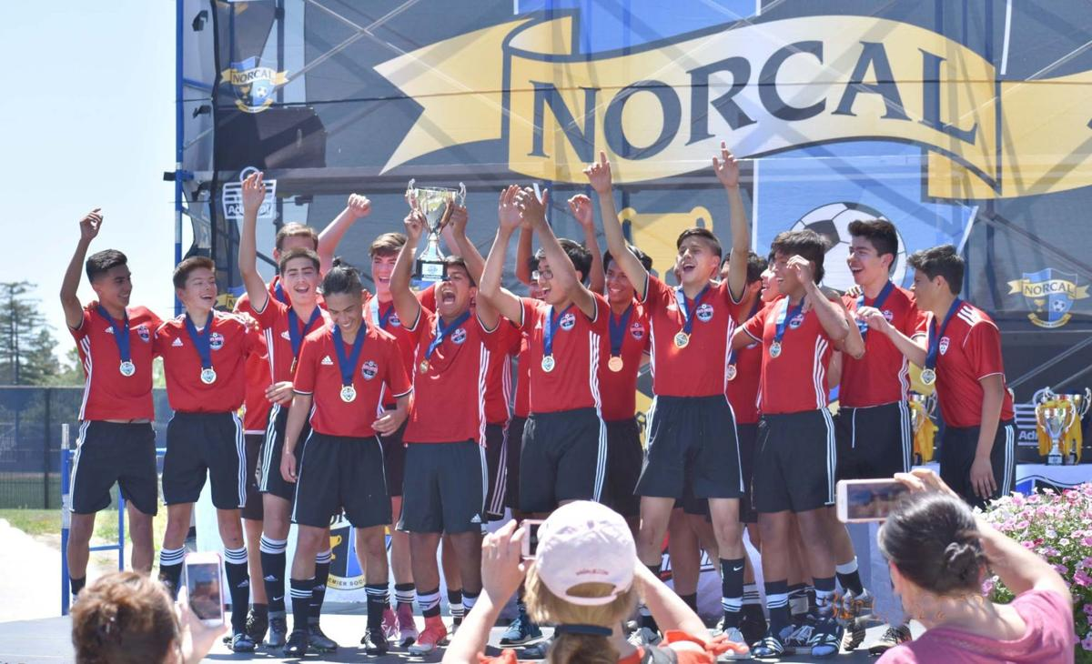 Napa United 2003 boys