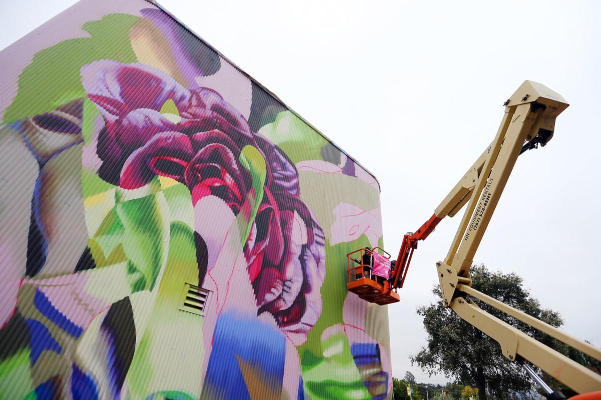 Muralist Hueman