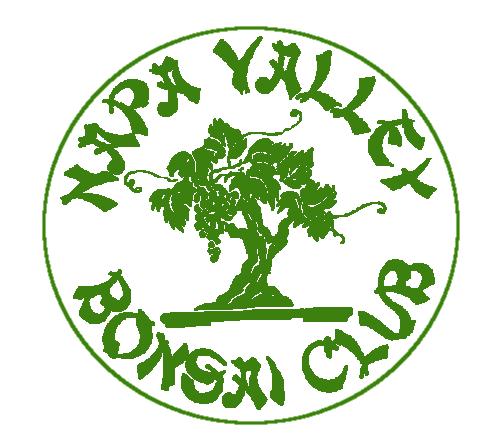 Napa Valley Bonsai Club