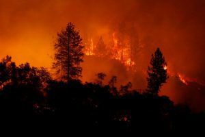 Newsom's wildfire plan, fracking fight and a forced resignation