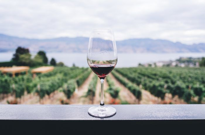 3 Outstanding Natural Wine Brands From California and How to Work for Them