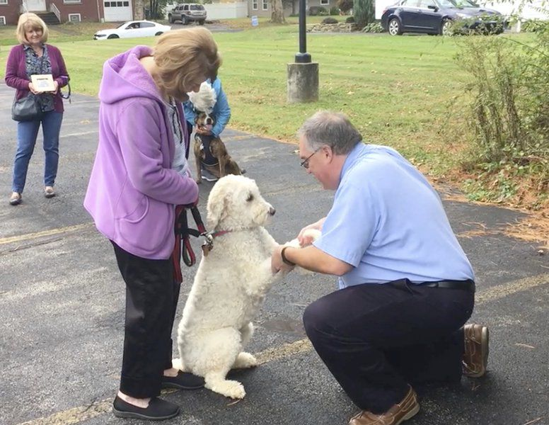 Dogs, bees and a goose turn out for pet blessing