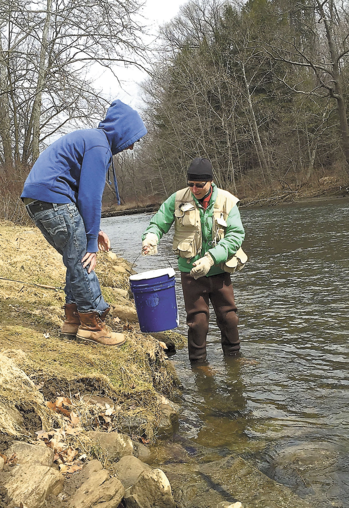 Trout stocking II