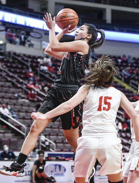 COLUMN: Ron Poniewasz Jr. Neshannock, Mohawk girls basketball teams made county proud