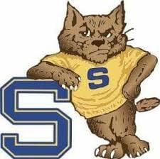 Shenango Wildcats logo