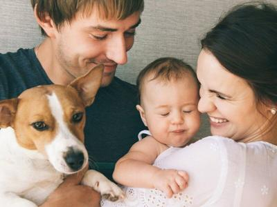PET TALK: Introducing a new baby to pets